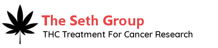 The Seth Group